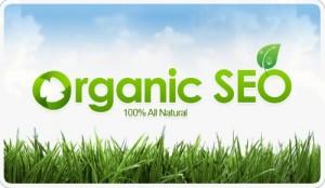 organic seo tips